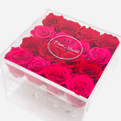 red and pink ombre preserved forever roses that last a year