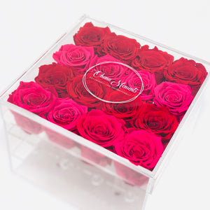 Clear Modern Rose Box containing a mix of Hot Pink Roses and Red Roses that will last for years