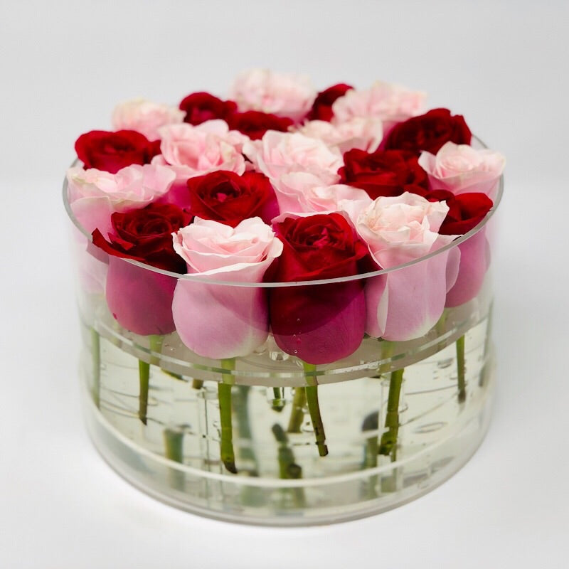 BUILD YOUR OWN: Faye Box Forever Rose - Checkered