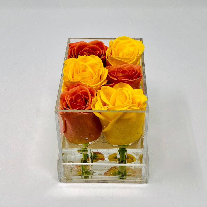 Clear Modern Rose Box with Forever Roses Long lasting roses that last for years in orange and yellow roses