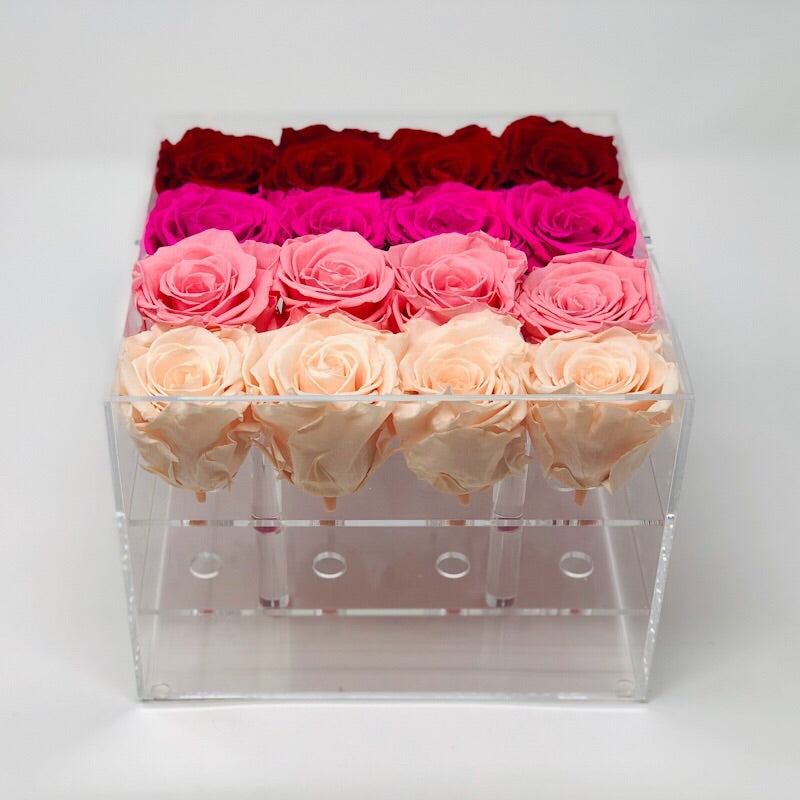 Clear Modern Rose Box with Forever Roses Long lasting roses that last for years with  an ombre mix of ivory roses, pink roses, hot pink roses and red roses for Valentine's Day