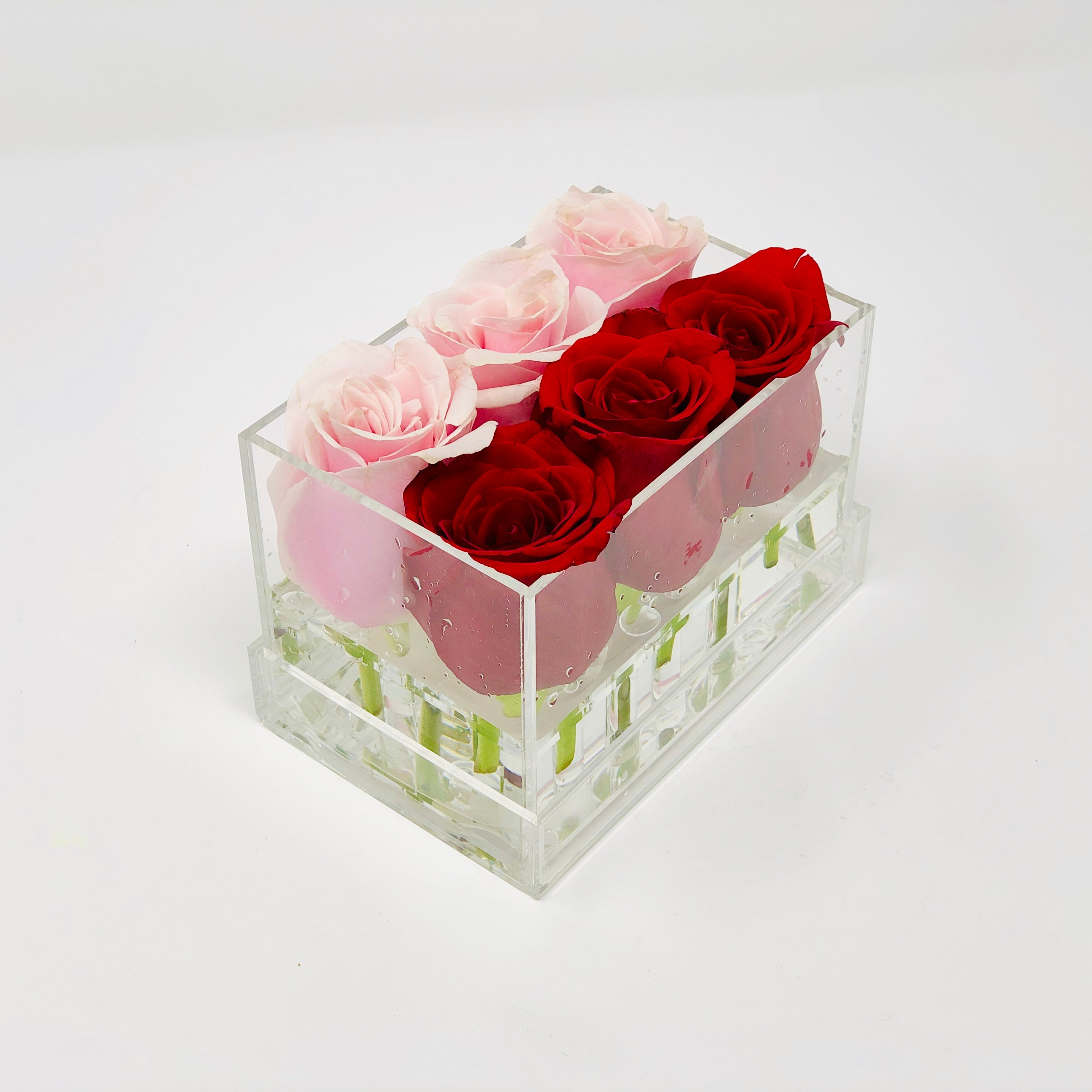Clear Modern Rose Box with Forever Roses Long lasting roses that last for years with  an mix of pink roses and red roses for Valentine's Day