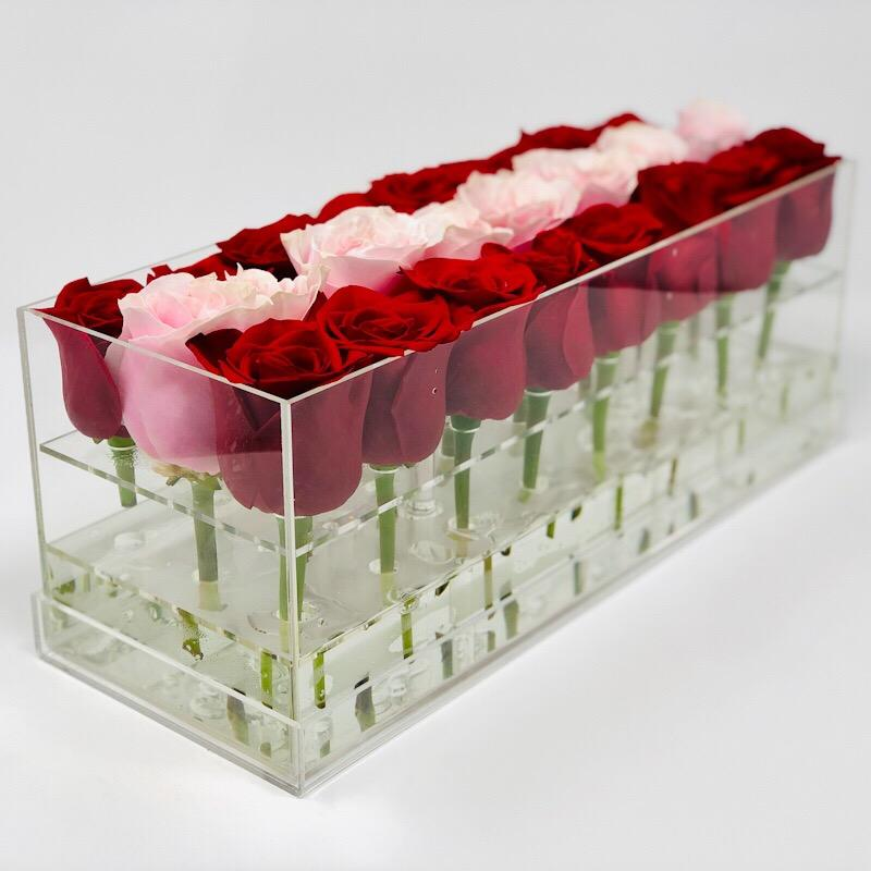 Aldi Box Forever Rose - Stripe