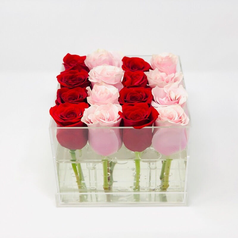 Modern Rose Box with preserved roses that last for years with a mix of red roses and pink roses