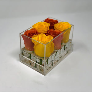 Lisi Box Forever Rose - Checkered