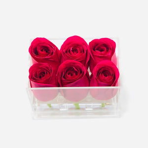 Clear Modern Rose Box with Forever Roses Long lasting roses that last for years with hot pink roses