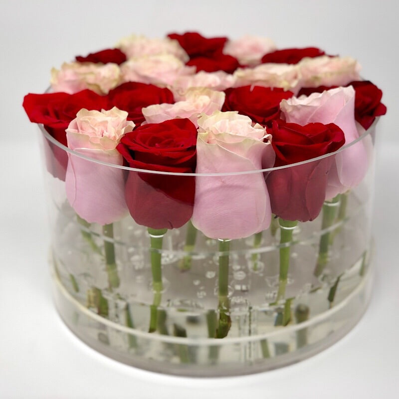 Clear Modern Rose Box with Forever Roses Long lasting roses that last for years with pink roses and red roses for Valentine's Day