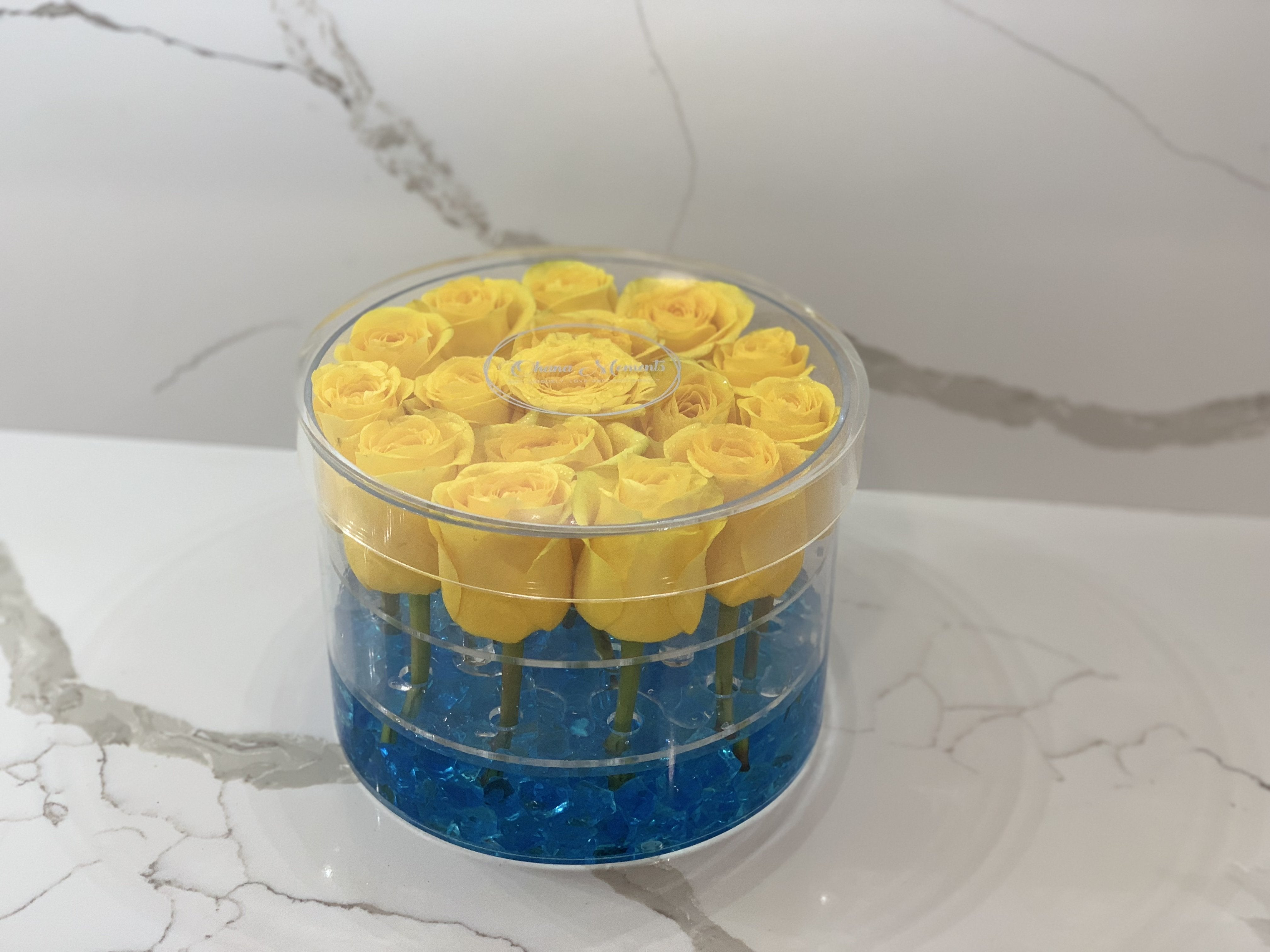 Modern Rose Box with Preserved long last lasting roses that last for years in Yellow Roses