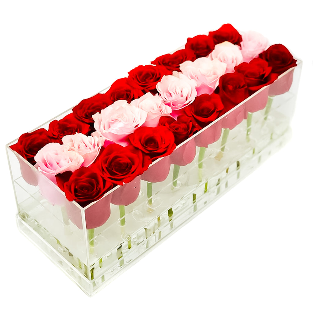 The Candy Stripe Half & Half Forever Rose Box - Large