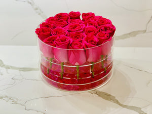 Modern Rose Box with Preserved long last lasting roses that last for years with Hot Pink Roses