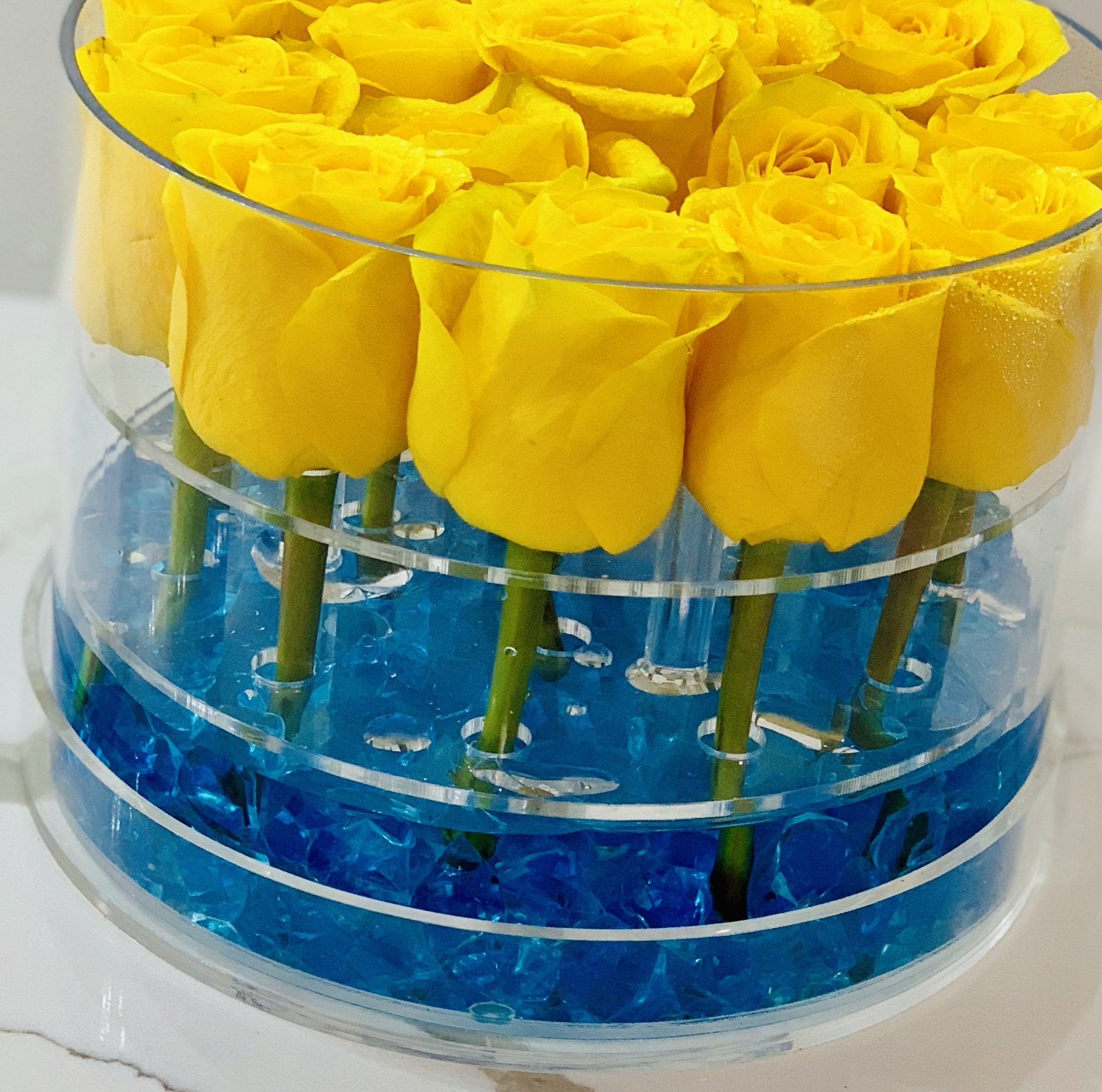 Modern Rose Box with Preserved long last lasting roses that last for years with yellow Roses