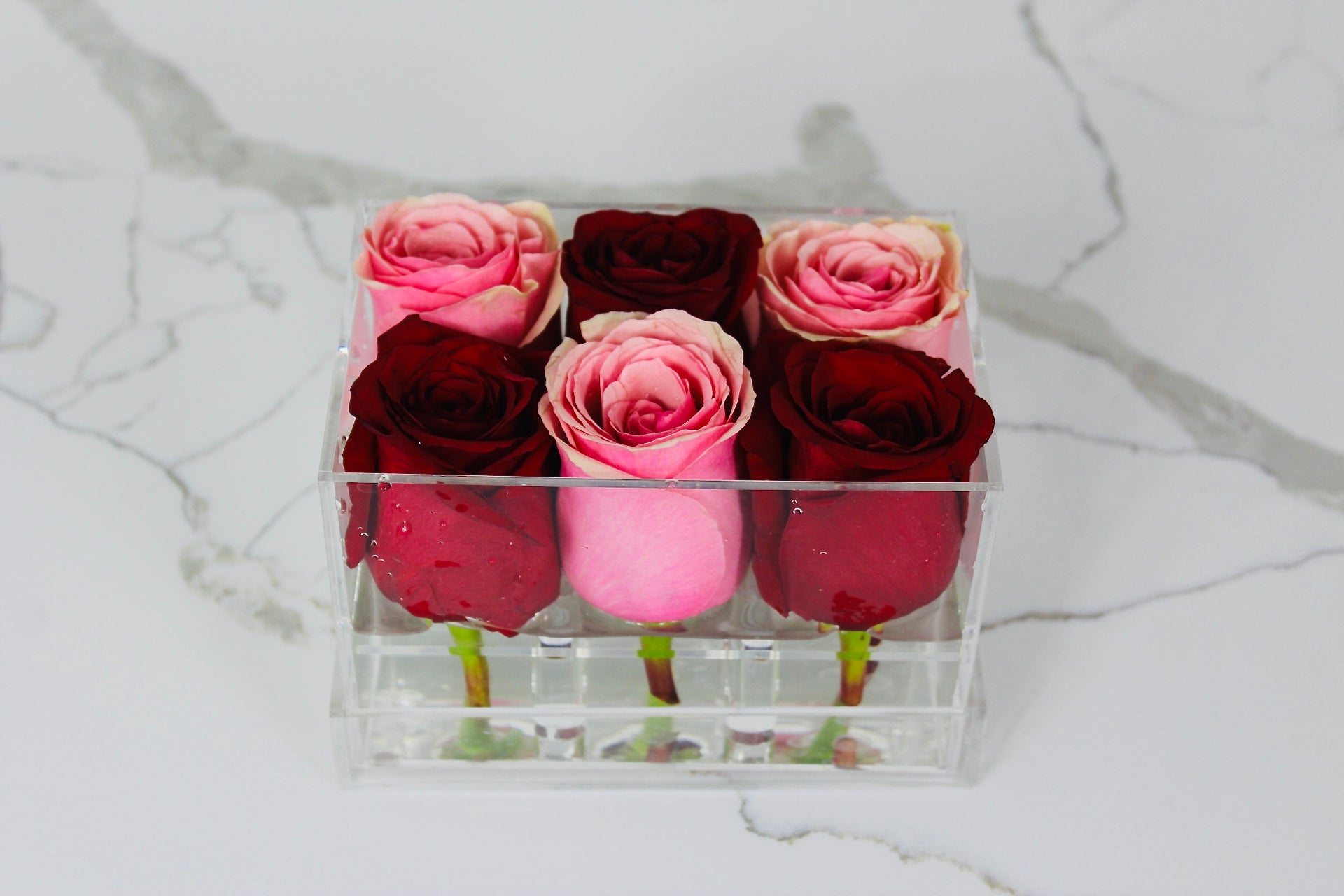 Clear Modern Rose Box with Forever Roses Long lasting roses that last for years in pink and red roses