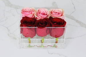 Clear Modern Rose Box with Forever Roses Long lasting roses that last for years in red roses and pink roses