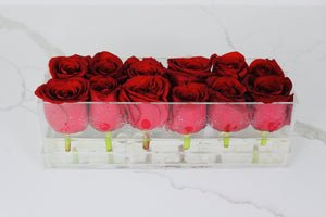 Clear Modern Rose Box with Forever Roses Long lasting roses that last for years with red roses