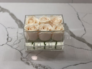 Clear Modern Rose Box with Forever Roses Long lasting roses that last for years with white roses