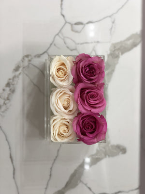 Clear Modern Rose Box with Forever Roses Long lasting roses that last for years in white roses and pink roses