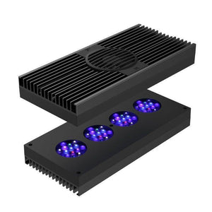 LED Lighting - AI Hydra 52 HD Aqua Illumination Black LED Lighting W/ Mounting Options