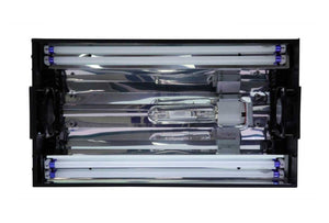 "Metal Halide Lighting - Hamilton Technology Cebu Sun 24"" SE Metal Halide Lighting System"