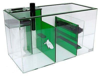 "Refugiums And Sumps - Trigger Systems Emerald Green 26"" - BLEMISH SALE!!!"
