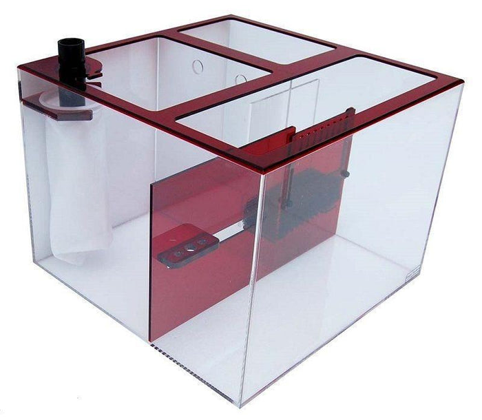 Trigger Systems Ruby Red Cube 20""