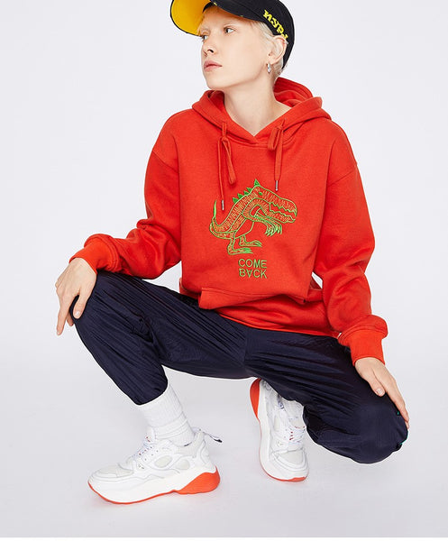 TOYOUTH COME BACK DINOSAUR EMBROIDERED HOODIE