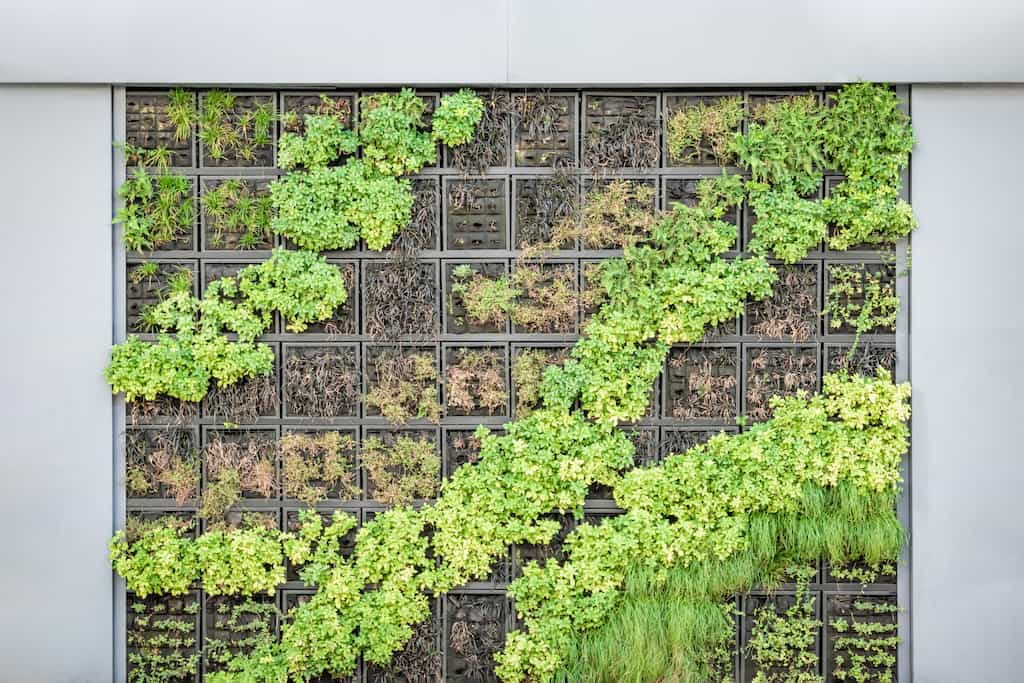 Garden Wall for Small Spaces
