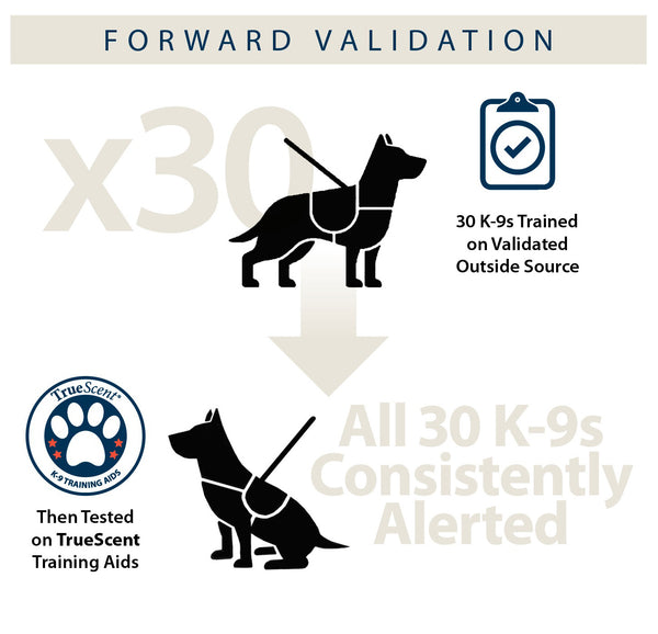 Infographic describing the Forward Validation process.