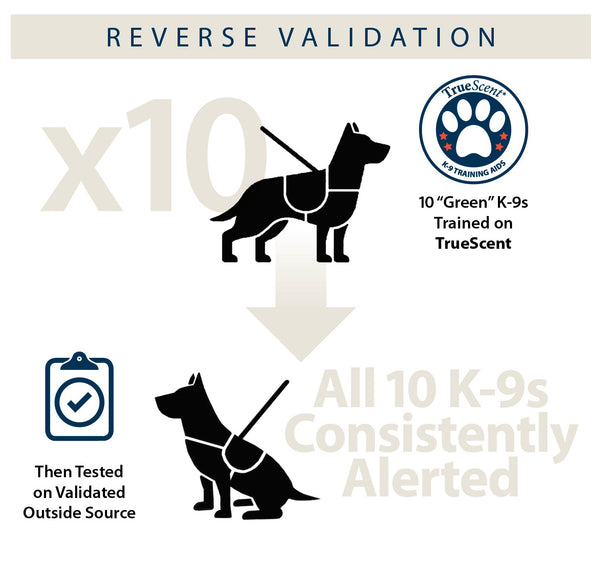 Infographic describing the Reverse Validation process.