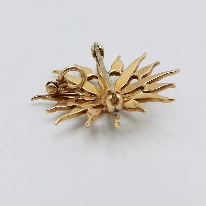 Late Victorian 14K Gold & Pearl Star Shaped Pendant Brooch Brooches, Pins Kirsten's Corner Jewelry