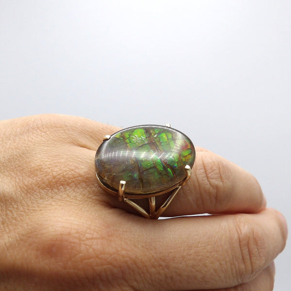 Rare 14K Gold Chromatic Ammonite Fossil Ring Ring Kirsten's Corner Jewelry
