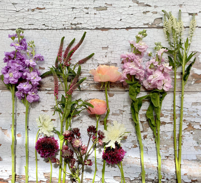 Bare Naked Stems Flower Subscription Service