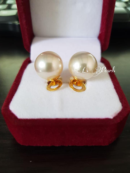 13mm Champagne South Sea Pearls Earrings