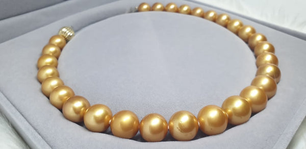 Golden South Sea Pearls Choker
