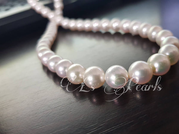 8mm South Sea Pearl Choker