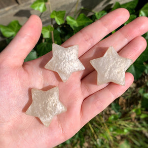 Champagne Star Magnets ✨