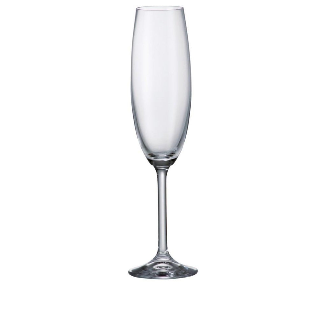 Champagne Flute 220mL, set of 6