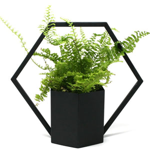 Black Hanging Planter