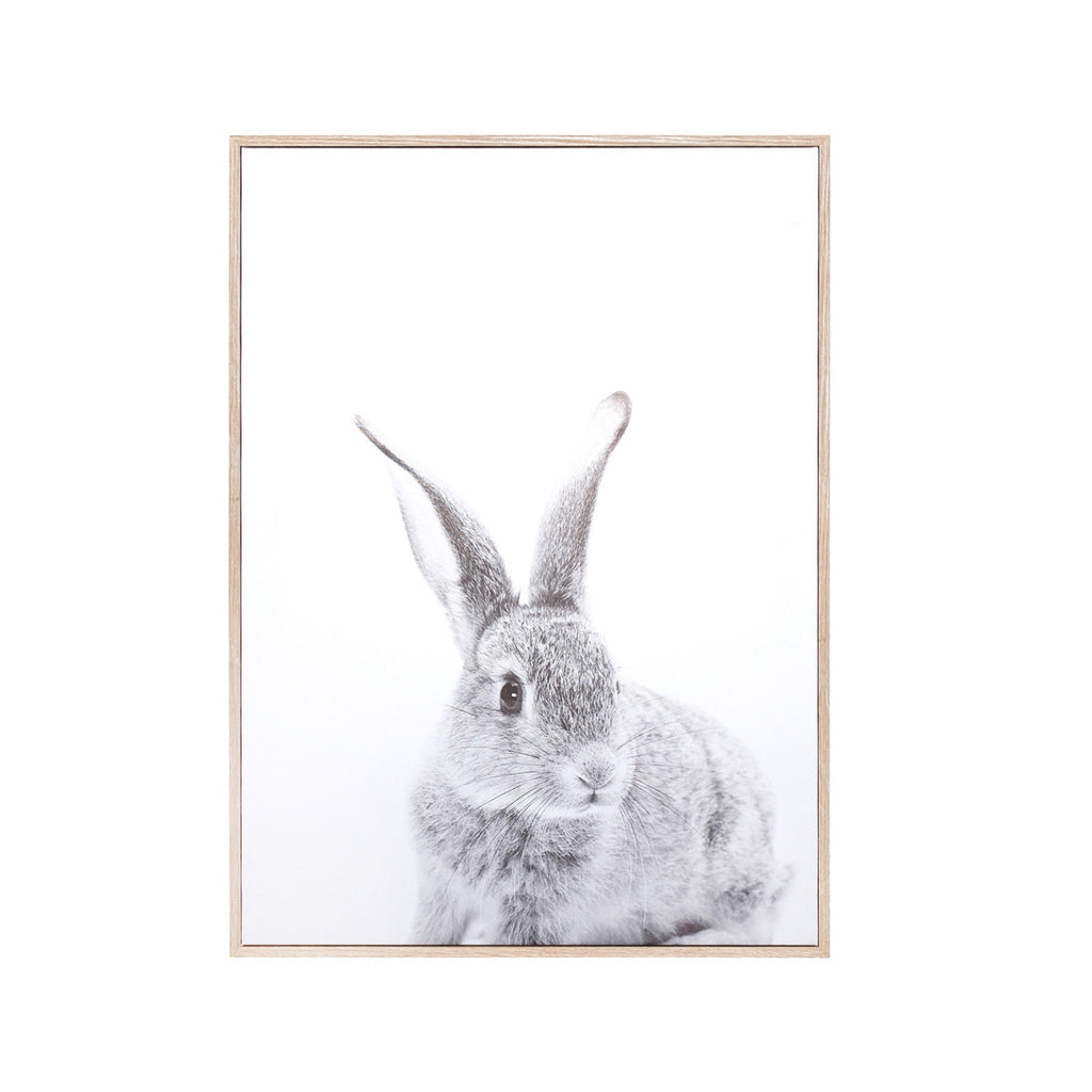 Rabbit Wall Canvas