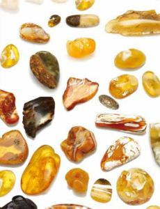 Natural Baltic Amber – Magnetic, Adaptogenic, Universally Applicable