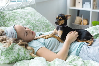 ANOTHER NIGHT, ANOTHER SLUMBER PATY?  HERE'S HOW TO HELP YOUR PET CATCH SOME ZZZ'S.