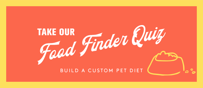 food finder quiz