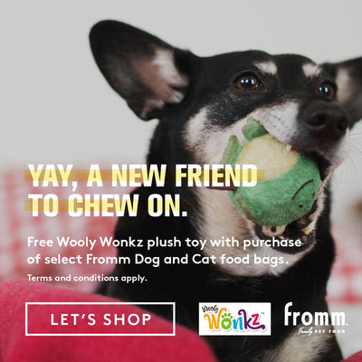 Pet Store, Pet Food & Pet Supplies | Loyal Companion