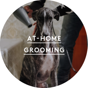 at home grooming