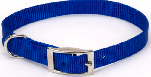 Coastal Pet Products Standard Nylon Medium Dog Collar