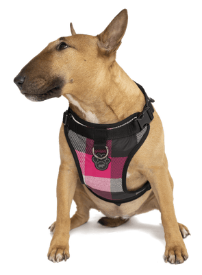 Canada Pooch Everything Harness Water-Resistant Series Pink Plaid Harness for Dogs