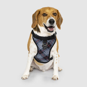 Canada Pooch Everything Harness Water-Resistant Series Plaid Harness for Dogs
