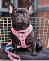 French Bulldog Harness | Versatile Health Harness | Pink StarPup