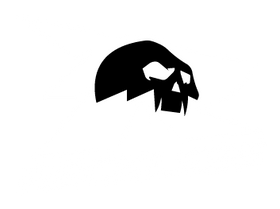 Reckless Store