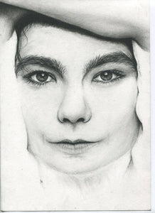 Bjork black and white charcoal pencil drawing face portrait fan art print poster wall decor