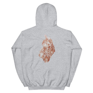 "Chinese Oracle Bone ""To pray for blessings with a bottle of wine"" Unisex Hoodie"